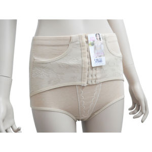 Slimming Jacquard Mesh High Waisted Tummy Hip Trimmer Girdle Knickers Underwear Pants (JM-2009)