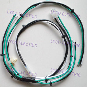 Wire Harness 01