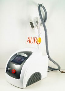 Cryolipolysis Cold Therapy Body Sculpture Machine for Sale pictures & photos