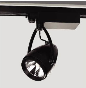 Powder Coating Finishing 30W Citizen COB LED Track Light with Ce RoHS Downlight (T3A0052)
