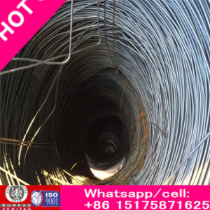 Rich Q195 Zinc Galvanized Steel Wire Bright From Wire Manufactur pictures & photos