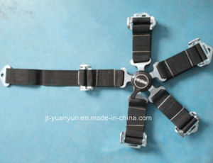 Fast Disassembly Type Five-Point Seat Belts pictures & photos