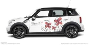 Fashion Printable Car Body Sticker, Vinyl Sticker