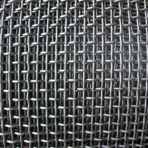 AISI 304/316 Twilled Weave Wire Mesh pictures & photos