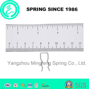 Custom Small High Precision Wiire Spring for Home Appliance pictures & photos