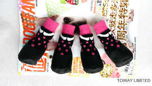 Design Printing PVC Anti Skid Stain Resistant Sports Pet Socks pictures & photos