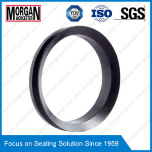 NBR/FKM Material Vl Profile Rotary Shaft V Seal Ring pictures & photos