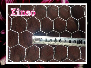 Galvanized Chicken Wire Fence (XA-HM410) pictures & photos