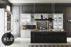 Modern Lacquer Finish Home Furniture Kitchen Cabinets (zz-056)