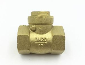 Dn15-Dn100 High Quality Brass Spring Check Valve with Brass Core