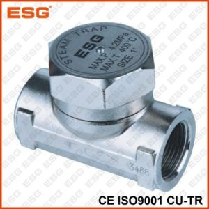 Hot Seal Stainless Steel Hermodynamic Steam Trap pictures & photos