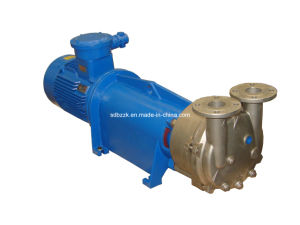2BV6131 One/Single Stage Water/Liquid Ring Vacuum Pump