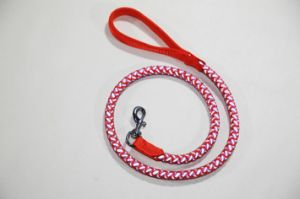 Cp01 Braided Web Nylon Polyester Pet Dog Buckle Tracking Leash