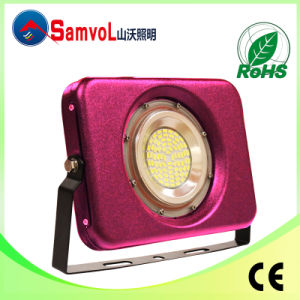 The New Hot, LED Floodlight, 10W, with CE and RoHS Certification
