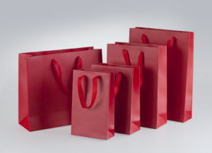 Hot Sale Professional Custom Paper Gift Bag with High Quality