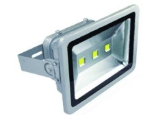 High Quality&Best Selling 10-200W Flood Light with Bridgelux COB