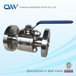 Stainless Steel Floating Flanged Ball Valve with Rtj End