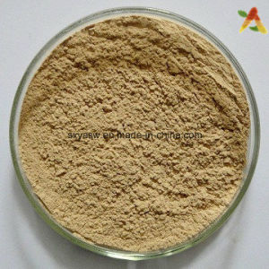 Natural Green Coffee Bean Extract 10%-60% Chlorogenic Acids