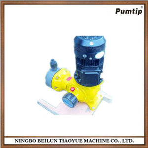 Chemical Dosing Pump for Sale pictures & photos