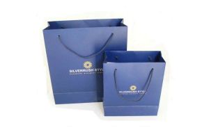 Hot Sales Paper Shopping Bag with Your Logo Printing pictures & photos