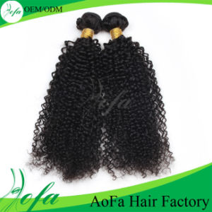 Unprocessed Top Quality Kinky Curly Hair Weave Human Hair Extension pictures & photos
