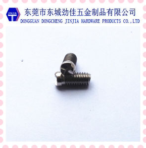M6 One-Way Security Screw for Door Locking