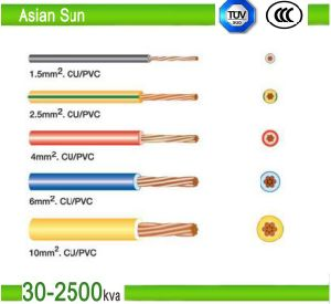 PVC-Insulated Copper Conductor Cable 450/750V for Sac pictures & photos