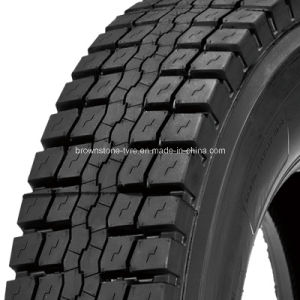 Aeolous, Double Star, Triangle Brand Truck Tyre pictures & photos