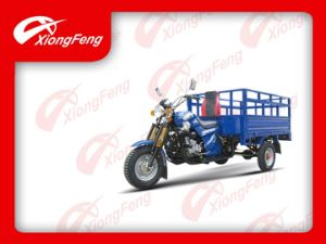 Front Six Shock Absorber Tricycle (XF150ZH-11) , Cargo Tricycle pictures & photos