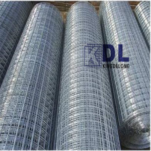 Hot Sale Electro Galvanized Welded Wire Mesh pictures & photos
