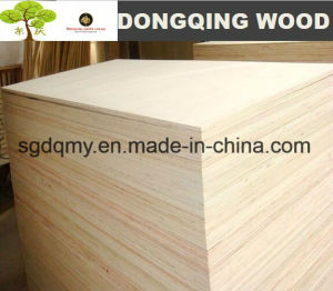 Poplar Plywood / Furniture Plywood with 3mm 9mm 12mm