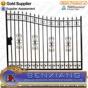 Iron Gate, Wrought Iron Decoration Door pictures & photos
