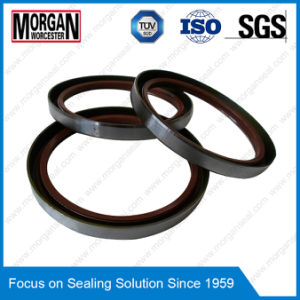 NBR/FKM Tb/BS Type Outer Skeleton Double Lips Oil Seal pictures & photos