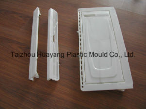 Injection Mold/Mould for Refrigeratory Industry (HY019) pictures & photos