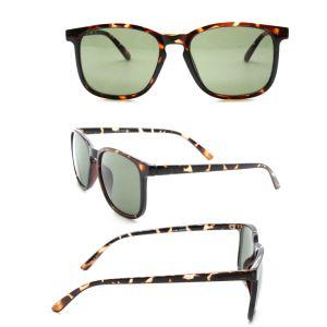 ffd22de83a2 China Cheap Wholesale Private Label Italy Design Ce Sunglasses ...