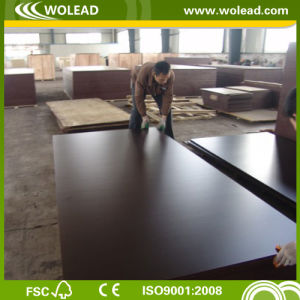 Hot Sale 18mm WBP Glue Brown Film Faced Plywood (W15029)