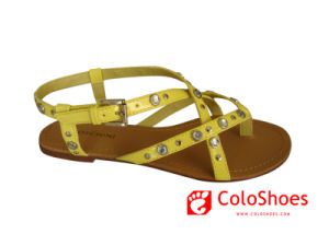 bd50b22fe China My Coface New Design Fashion New Style Shoes (CS-M008) - China Sandals