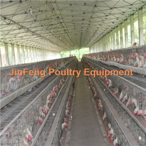 High Quality Factory Price Automatic Poultry Farming System for Chickens Layer Cages pictures & photos