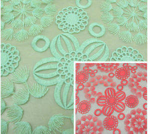 Supply High-Grade Ladies Organza Embroidery Fabrics Embroidered Cloth pictures & photos