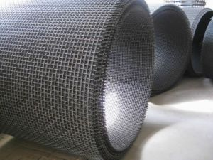 Crimped Wire Mesh for Mine Screen pictures & photos