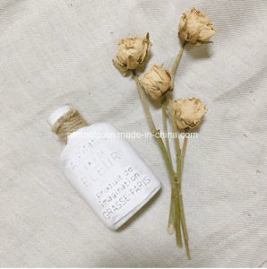 Perfume Bottle Shaped Aroma Scented Ceramic (AM-98)