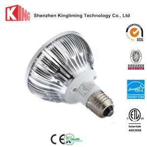 Aluminum with PC PAR30 E27 38/80degree PAR LED Lamp