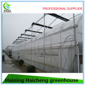EU Model Single Layer Film Greenhouse for Sale pictures & photos