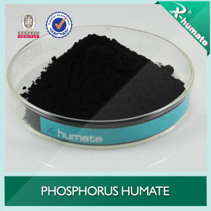 Soluble Phosphorus Humate (HA-P) pictures & photos