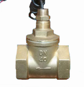 Brass Material Piston Type Flow Switch pictures & photos