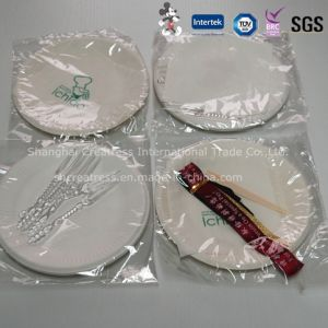 Wholesale Disposable Paper Dinnerware pictures & photos