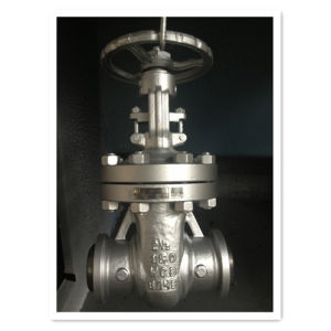 API 600 Cast Steel Butt Welding Gate Valve
