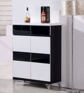 Great New Design Shoe Cabinet, Modern Shoe Storage, Shoe Box (B32)