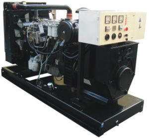 Diesel Generating Set (Open Type) pictures & photos