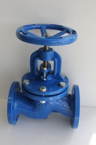 DIN3356 Straight Double Globe Valve with Handwheel Operator pictures & photos